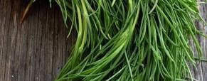 Le verdure che ci parlano della primavera: gli agretti