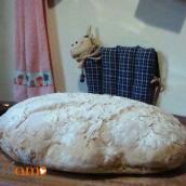 Buon Sabato con il pane al miele e la torta di verdure