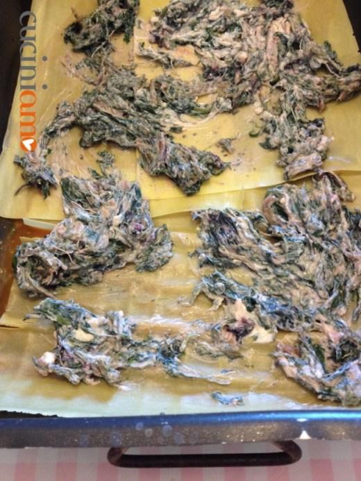 fare gli strati con le lasagne sfogliavelo e le verdure con vegrino