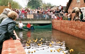 Duck Race in 2005