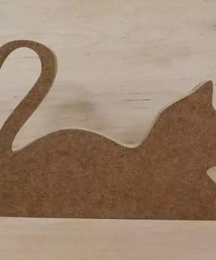 Leżący kot