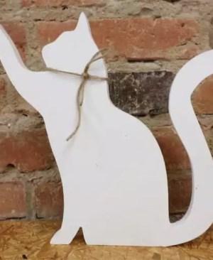 Kot sięgający łapką