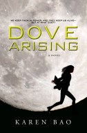 Dove Arising Redesign