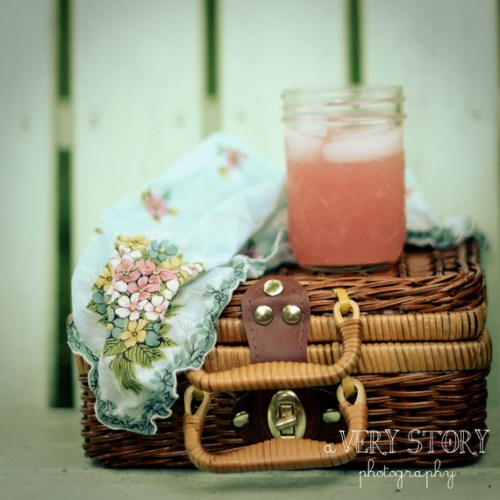 Pink Picnic by A Very Story
