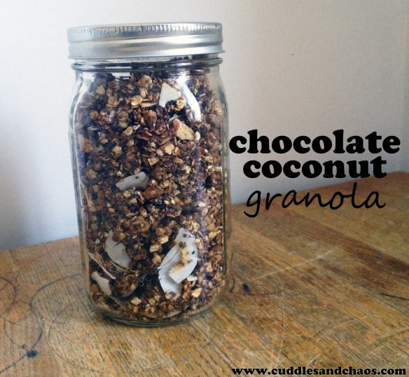 homemade chocolate coconut granola recipe