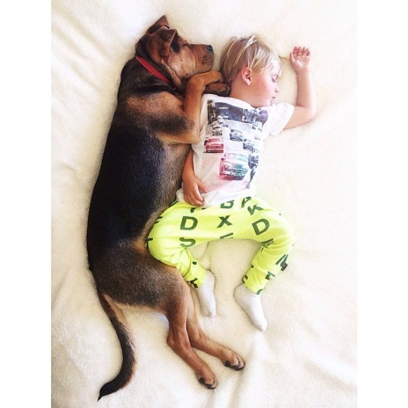 best mom Instagram accounts: mommasgonecity
