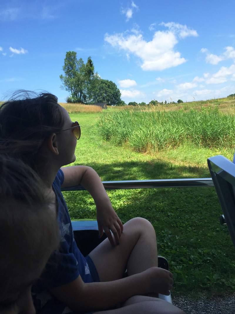 trolley ride at Storm King Art Center in New York