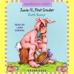 favorite audio books for kids | Junie B. Jones