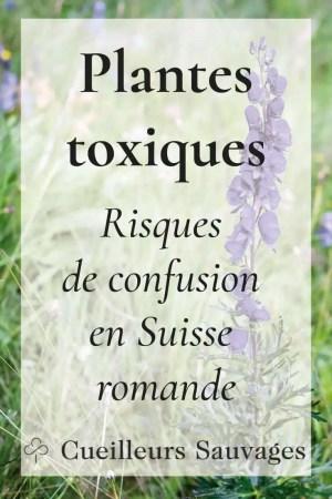 Évitez de consommer des plantes toxiques! Cet article présente la liste des cas avérés d'intoxication par des plantes toxiques en Suisse romande.