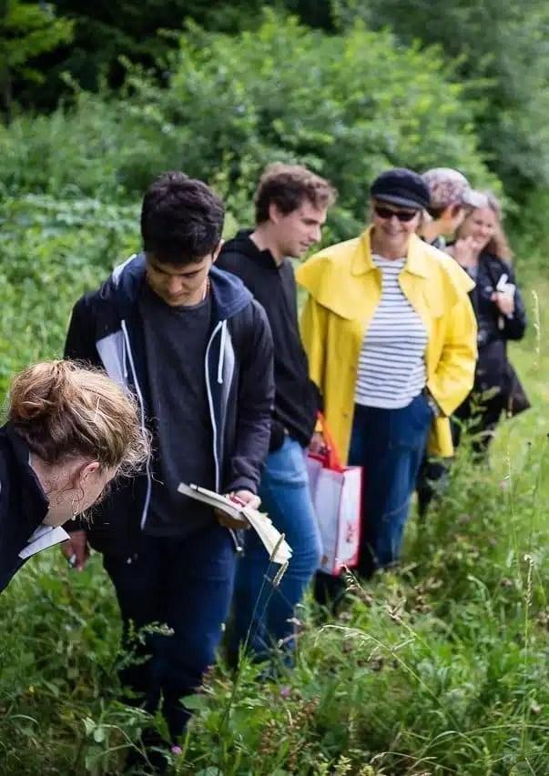 A la recherche des plantes sauvages comestibles