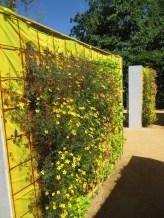 Our favorite garden - a rainbow garden:)