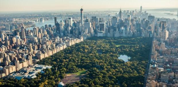 Central Park_New York
