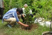 Prof. Asmita Kabra at DWP Plantation Drive