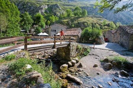 Puente de entrada a Bulnes