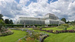 Kew_Gardens_Palm_House,_London_-_July_2009