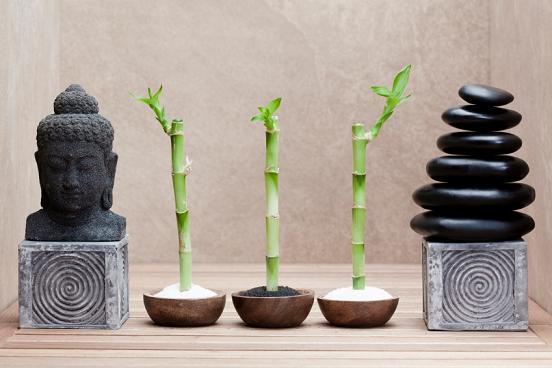 Los 10 Mandamientos del Feng Shui