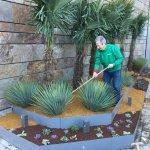 Paisajismo y jardinería en Madrid con cactus y crasas: Entrevistamos a Pepe Plana
