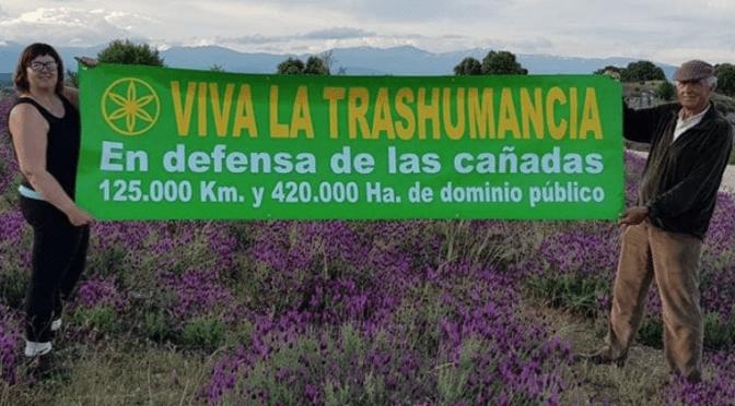 Viva la Trashumancia y Naturaleza