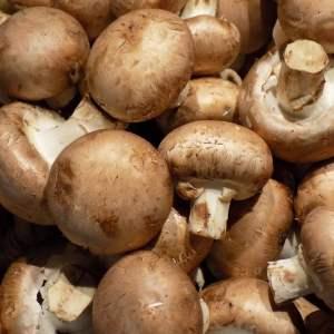 Comment cuisiner des champignons de paris ?
