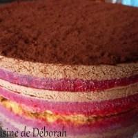 Entremets chocolat-framboise