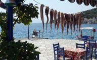 recette poulpe : Poulpes qui sechent en grece face à la mer.
