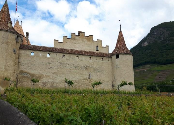 chateau d'aigle 4533x3246.01
