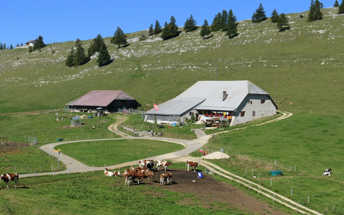 Métairies: Farmhouse Restaurants in French-Speaking Switzerland