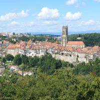 Why You Should Take the Taste My Swiss City Tour in Fribourg