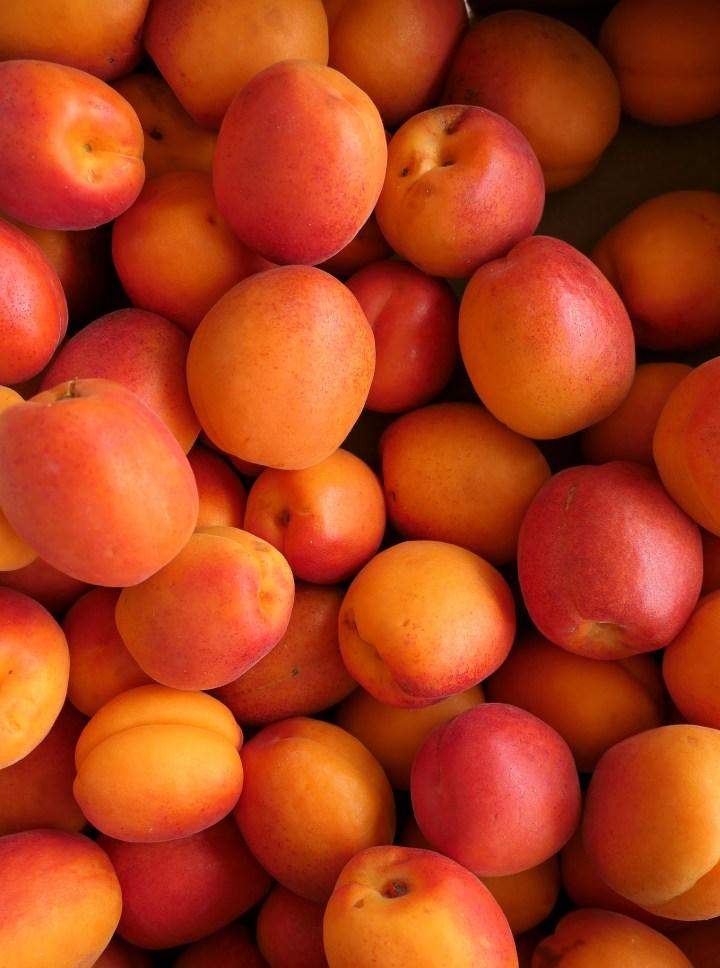 abricots valaisans