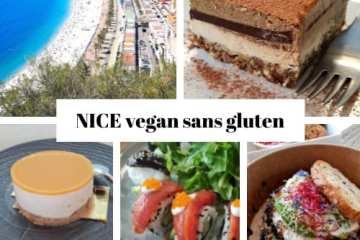 Restaurant vegan Nice