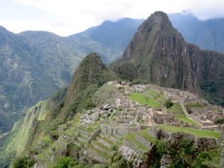 Machu Picchu blends into the hillside