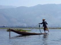 Myanmar–Inle Lake–Leg Rower Fishing
