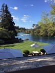 Huka Lodge Grounds