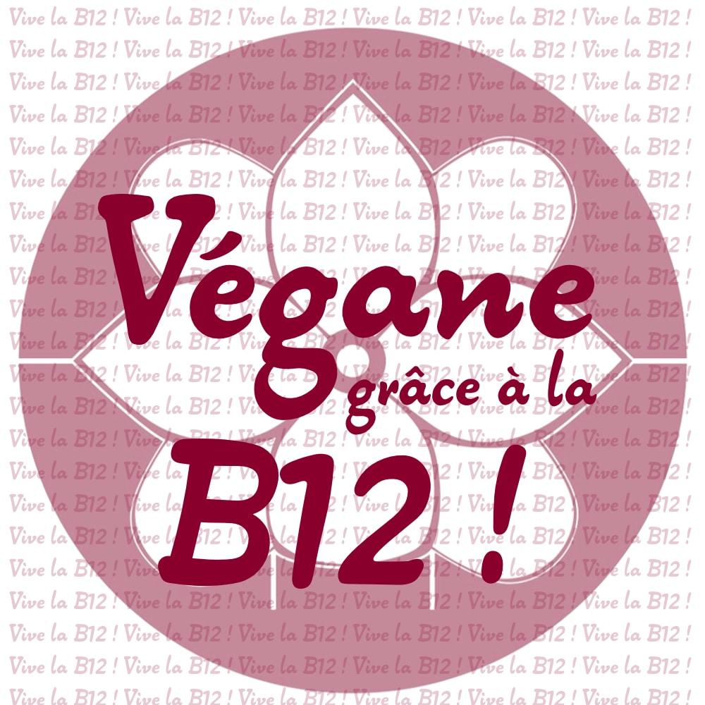 B douze cuisine v gane pour d butant e - Cuisine thai pour debutants ...