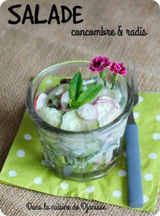 Salade végane concombre et radis
