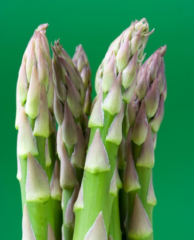 Asparagus tips closeup