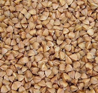 buckwheat seeds closeup
