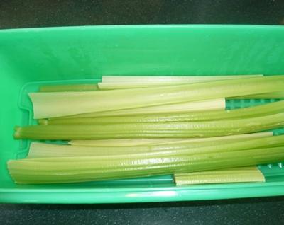 Plastic celery storage bin