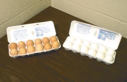 cartons of brown and white eggs