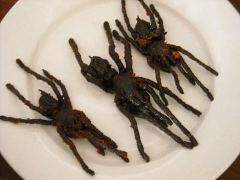Fried tarantula spiders on plate