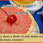 why does salt make grapefruit taste sweeter