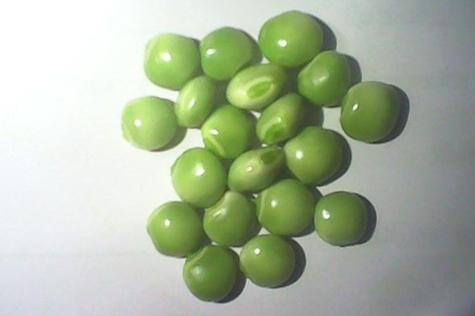 green pigeon peas