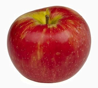 Honeycrisp apple closeup