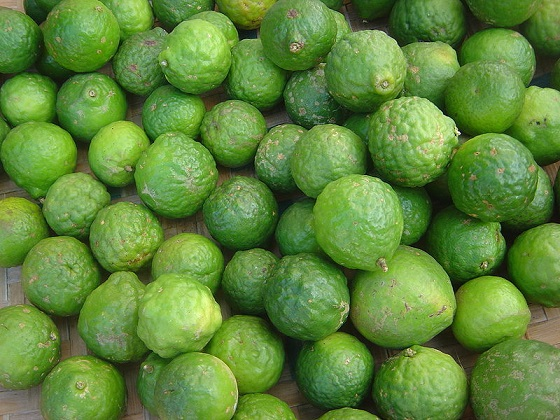 fresh Kafir lime fruits