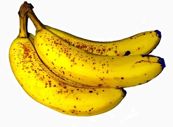 bunch of perfectly ripe bananas, with spots