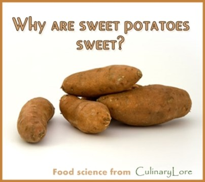 why are sweet potatoes sweet?