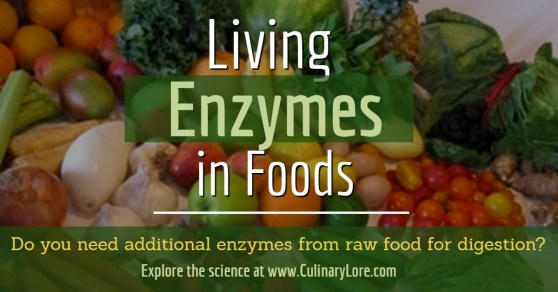 Do you need the enzymes from raw foods to propery digest the food you eat? Explore the science behind enzymes at www.CulinaryLore