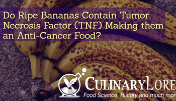 We May Soon Have A Cancer Vaccine! | culinarylore com
