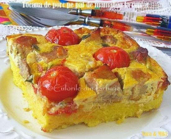 Tocana-de-porc-pe-pat-de-mamaliga-la-cuptor2-1