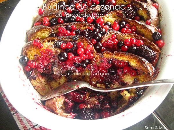Budinca-de-cozonac-cu-fructe-de-padure-3-1